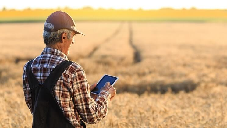Farmer in field with tablet